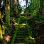 Soñar con una escalera - sueños premonitorios
